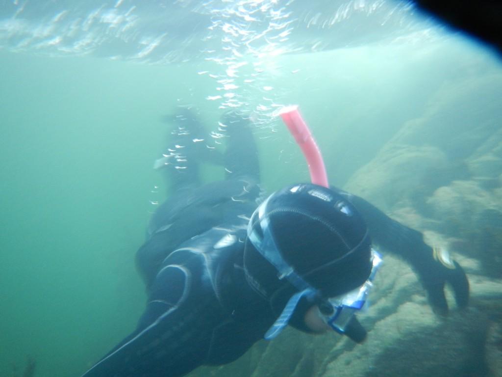 underwater 025