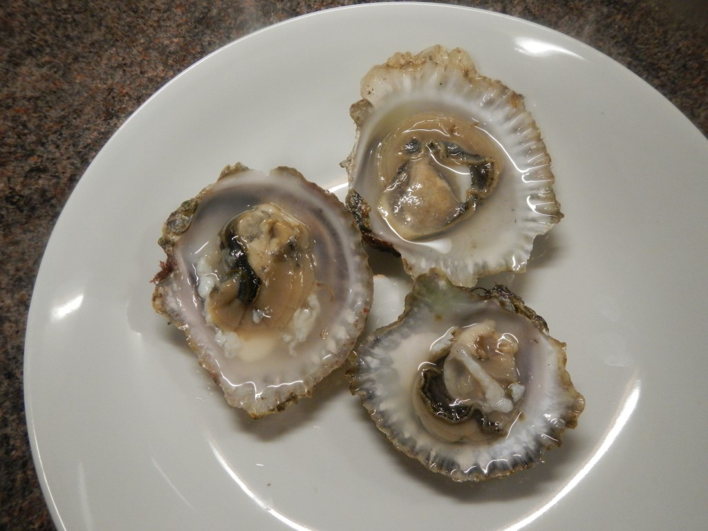 Skye oysters